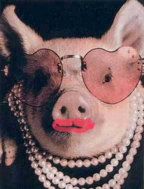 Stop Me if You've Heard This One Before: A Pig Wearing ...