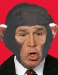 bush_monkey_face-copy