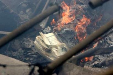 Muslims burn the Koran all the time -