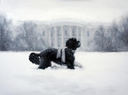 whitehousecard